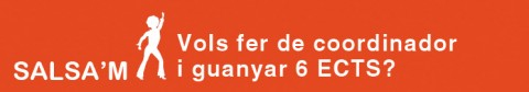 Programa Salsam - beca coordinador